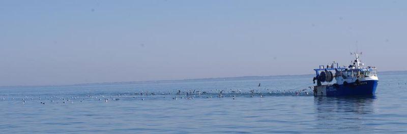 Pêcheurs en Mer